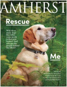 Cover of Amherst Magazine